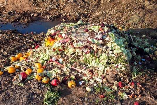 Компостирование пищевых и других органических отходов