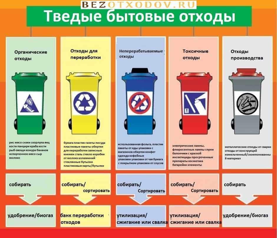 Что такое твердые бытовые отходы, сбор, утилизация и переработка