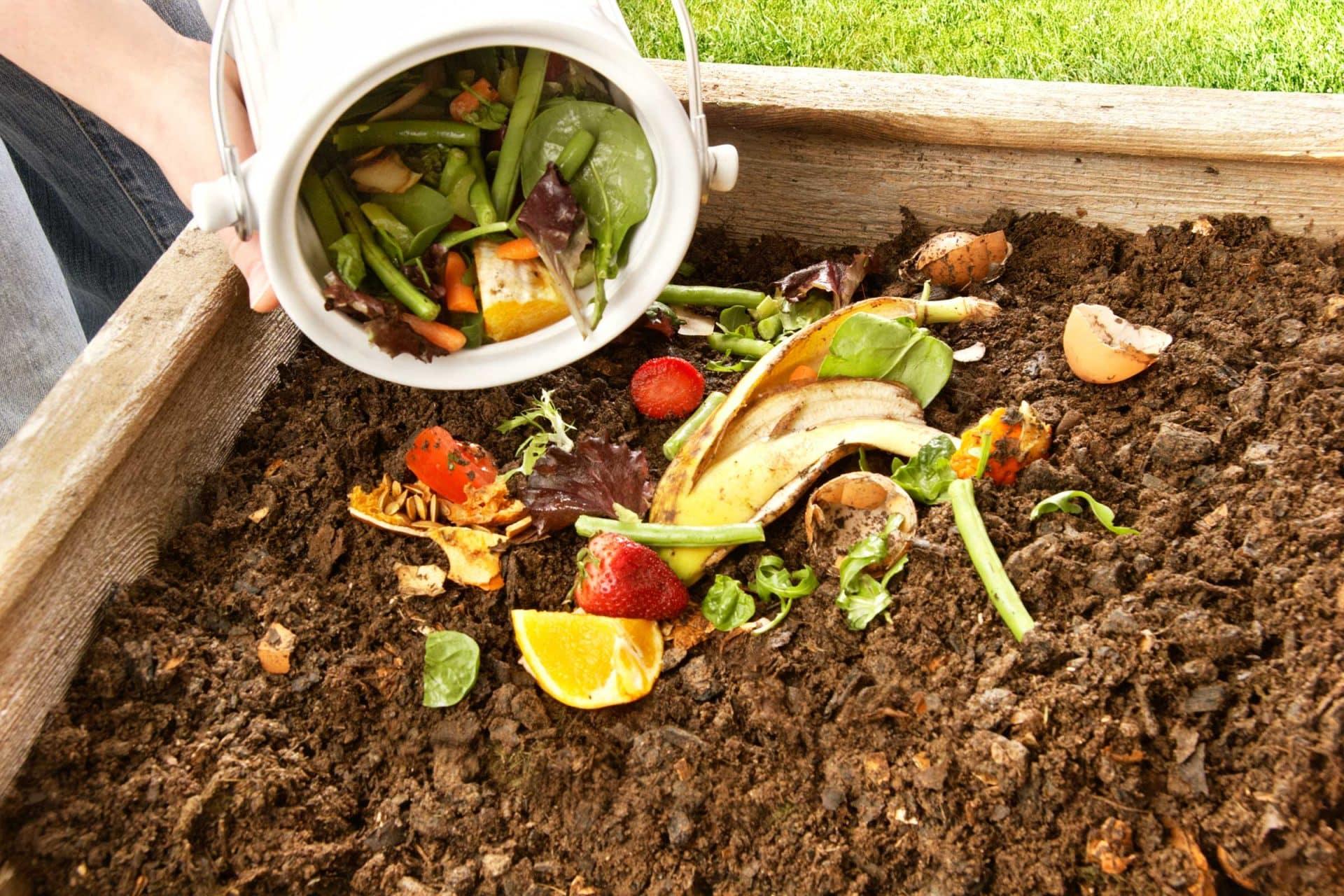 Методы компостирования мусора и отходов