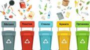 Системы сортировки мусора: мусоросортировочный завод, сортировка дома