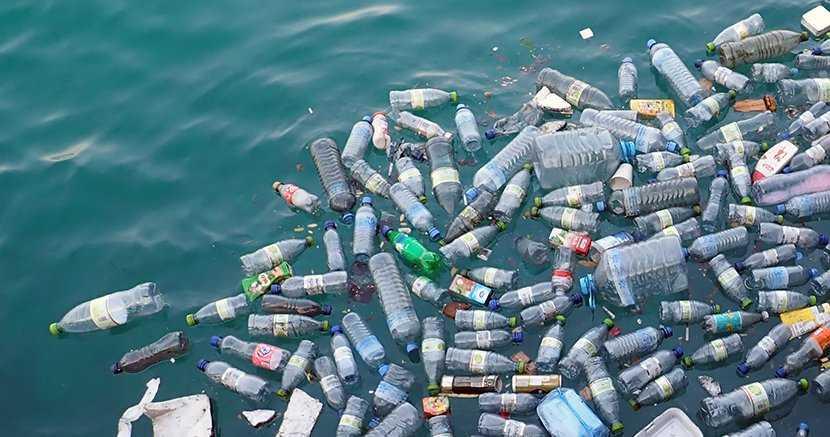 Сброс пластиковых бутылок в мировой океан - огромная проблема современной цивилизации
