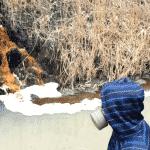 Загрязнение тяжелыми металлами окружающей среды