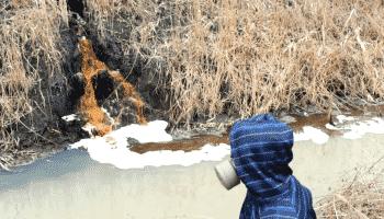 Загрязнение почвы химическими веществами: последствия и охрана