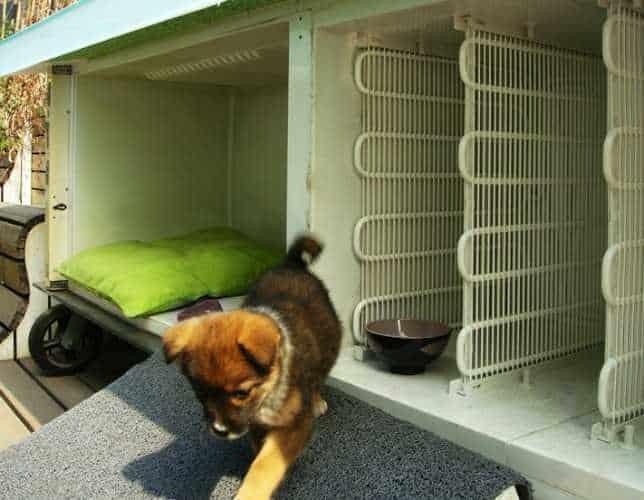 Удачная идея использования старого холодильника в качестве жилья для домашних животных