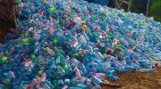 Как правильно утилизировать ПЭТ бутылки?