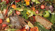Способы переработки органических отходов