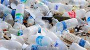 Сколько лет разлагается пластик в природе?
