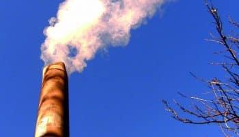 Основные загрязняющие вещества: перечень и их ПДК