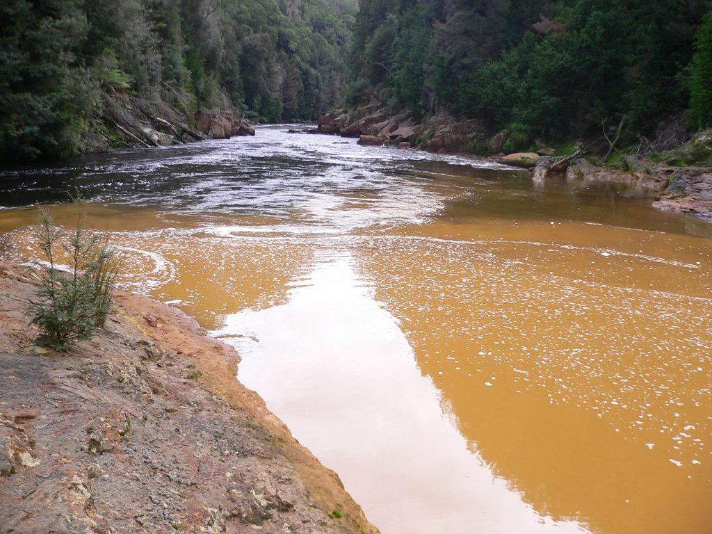 река кинг