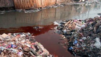 Наиболее загрязненные реки мира и России: ТОП-10