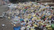 Правила и способы утилизации отходов в России и мире