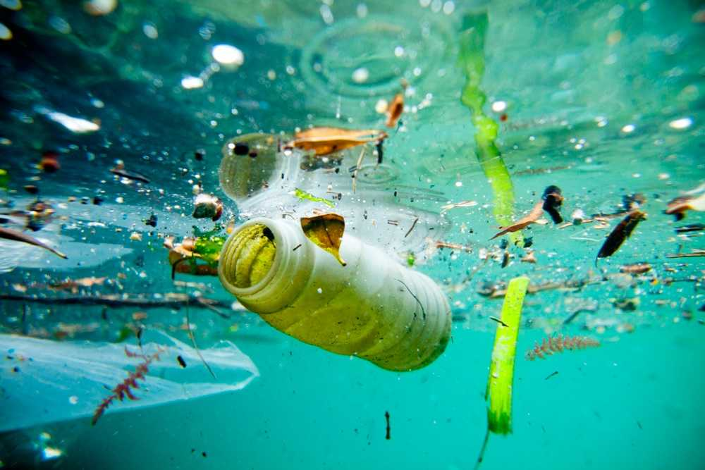 Причины загрязнения водных ресурсов и его последствия