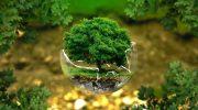 Закон об охране окружающей среды РФ