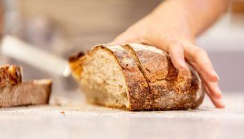 Переработка хлебных отходов: вторичное использование и бизнес-идея