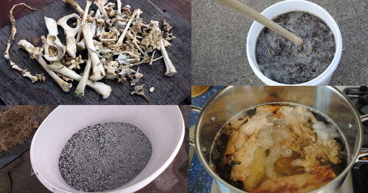 Этапы переработки костей
