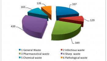 Морфологический и компонентный состав отходов
