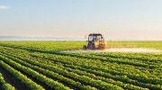 Технология производства и переработки сельскохозяйственной продукции