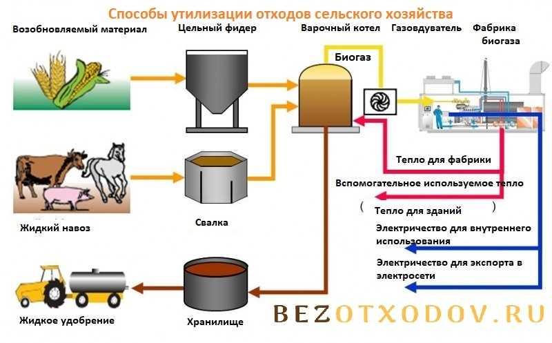 Способы утилизации отходов сельского хозяйства