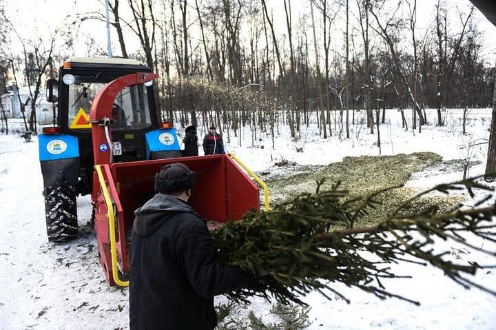 Переработка елок