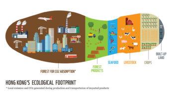 Что такое экологический след человека и как его уменьшить?