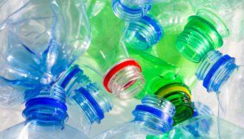 Изделия из пластиковых бутылок: елки, корзины, кормушки, украшения и многое другое