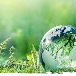 Международные и российские природоохранные организации