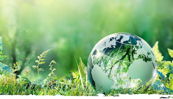 Правила проведения общественного экологического контроля