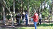 Виды и методы экологического мониторинга окружающей среды