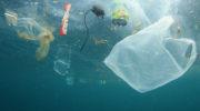 Чем загрязняют моря и методы решения проблемы
