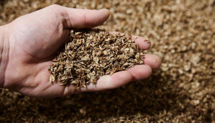 Что относится к зерновым отходам и как их использовать?