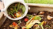 Переработка и использование пищевых отходов